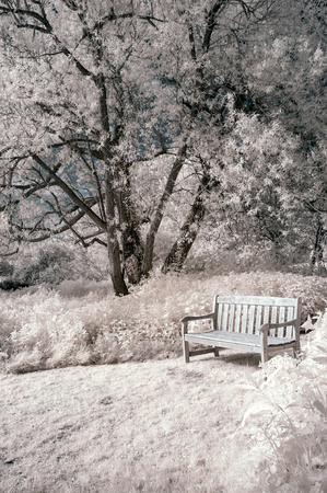 infra red: Surreal alternative colour infrared English countryside landscape  Stock Photo