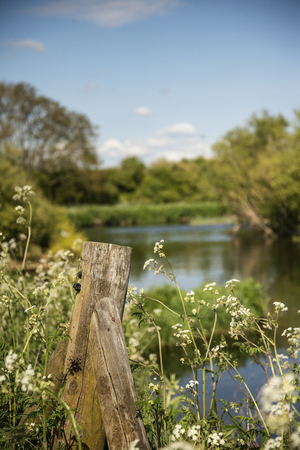 필드의 얕은 깊이와 아름 다운 영어 시골 강 풍경