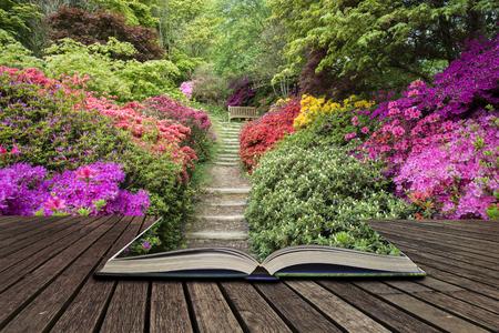 영국에서 봄에서 진달래 꽃으로 보도 테두리의 아름 다운 풍경 이미지 펼친 책