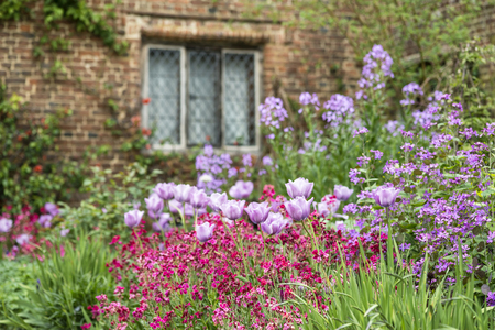 Quintessential English Country Garden Scene Landscape With Fresh Spring  Flowers In Cottage Garden Stock Photo