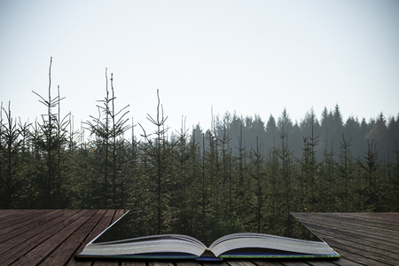 Beautiful landscape image of pine trees against misty distant background coming out of pages of open story book 写真素材