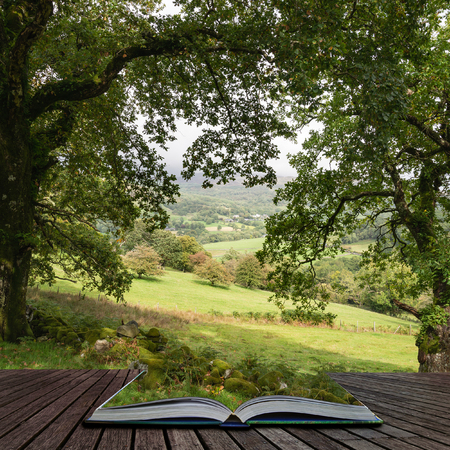 Belle image de paysage de vue depuis Precipice Walk à Snowdonia surplombant la forêt de Barmouth et de Coed-y-Brenin sortant des pages d'un livre d'histoires magiques Banque d'images