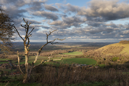 Beautiful Autumn Fall landscape of South Downs National Park in English countryside in late afternoon light on cold day Stockfoto