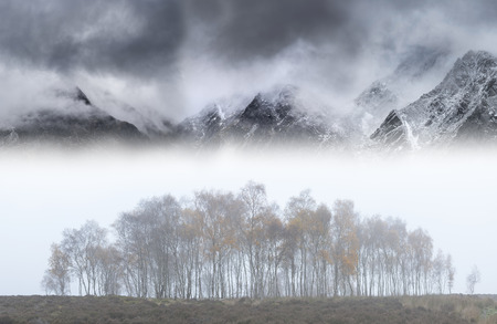 Stunning epic landscape image in Autumn with foggy trees in front of draamtic mountain ridgeline in background