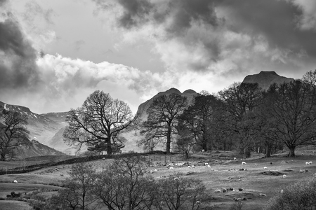 Beautiful landscape image of Loughrigg Tarn in UK Lake District during moody evening in Spring in black and white