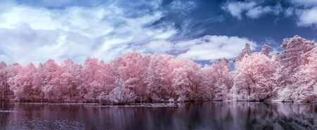 Beautiful surreal false color infra red Summer landscape of lake and woodland in English countryside Stock Photo