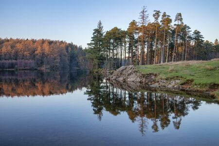 Stunning landscape image of Tarn Hows in Lake District during beautiful Autumn Fall evening sunset with vibrant colours and still waters