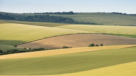 Beautiful Summer landscape of agricultural fields in English countryside during soft sunset light