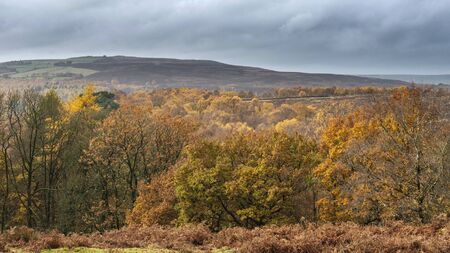 Landscape view from Owler Tor in Peak District in Enlgand during Autumn Fall