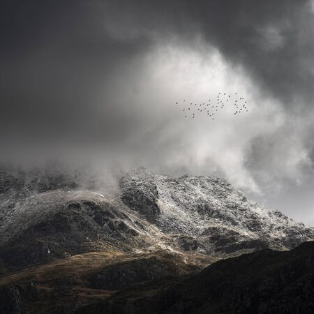 Stunning moody dramatic Winter landscape image of snowcapped Tryfan mountain in Snowdonia during stormy weather with birds flying high above