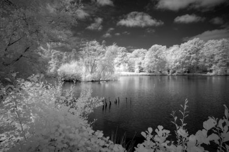 Beautiful black and white infra red Summer landscape of lake and woodland in English countryside Imagens