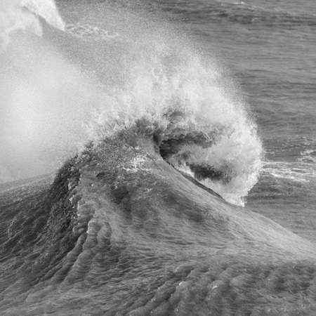 Stunning image of individual wave breaking and cresting during violent windy storm in black and white with superb detail