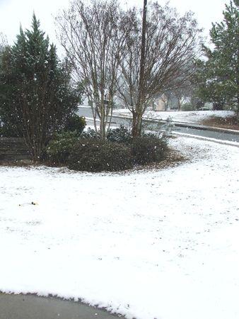 frontyard: Frontyard on a snowing day in Atlanta