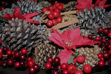 Close-up of pine cone and poinsettias Stock Photo - 3948266