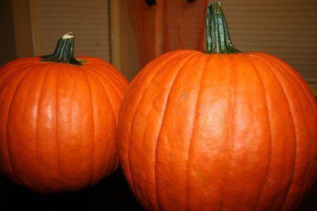 Pumpkins Banco de Imagens