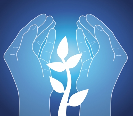 Human Hands holding plant - vector concept Vector