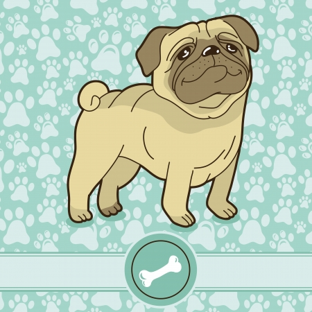 Vector funny cartoon pug - on blue background with pattern Vector