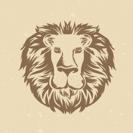 head of lion: lion head in engraving style - vintage illustration