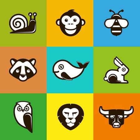 Vector abstract logo symbols in trendy flat style - lion, bull, monkey, raccoon Vector