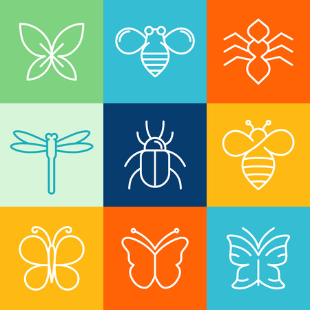 Vector insects and bugs icon design elements - mono line icons and signs