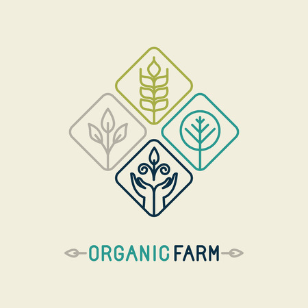 and organic: Vector agriculture and organic farm line logo - design elements and badge for food industry