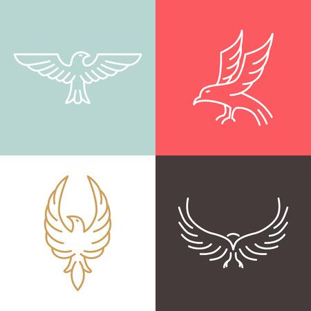 Vector eagle and falcon linear logo design templates - set of mono line icons