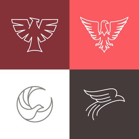 eagle badge: Vector eagle and falcon linear logo design templates - set of mono line icons