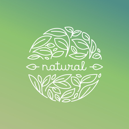 öko: Vector natürlichen Etikett in trendy linearen Stil - Abzeichen mit grünen Blättern Illustration