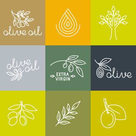 olive: Vector olive oil icons and logo design elements in trendy linear style - mono line illustrations and concepts for packaging of extra virgin olive oil and fresh farm products