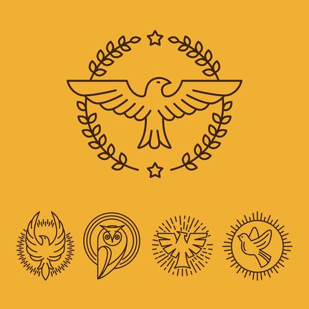 ave fenix: Vector de águila y halcón logo lineal plantillas de diseño - conjunto de iconos de línea mono