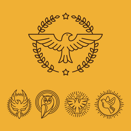 eagle owl: Vector eagle and falcon linear logo design templates - set of mono line icons