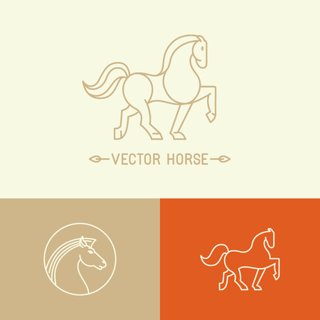 horses: Vector horse logo template in trendy hipster  linear style - set of abstract emblems and concepts- mono line icons Illustration
