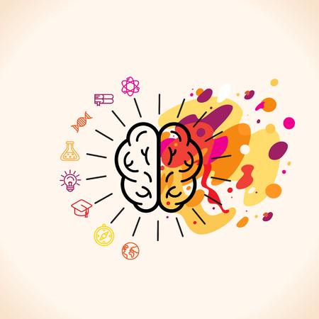 cerebro: Ilustración del vector en estilo lineal plana - hemisferios cerebrales izquierdo y derecho - el pensamiento analítico y creativo