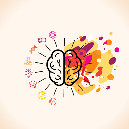 brain: Vector illustration in flat linear style - left and right brain hemispheres - analytical and creative thinking