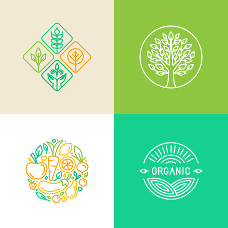 gıda: Vektör Lineer logo tasarım şablonu ve rozetleri - organik gıda ve tarım - yeşil ve vegan gıda kavramları Çizim