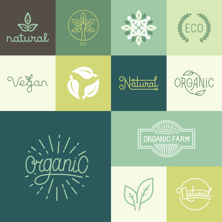 Vector set of natural, organic, vegan badges and  design templates in trendy linear and flat style - collection of design elements, icons and emblems for fresh and healthy products Ilustração