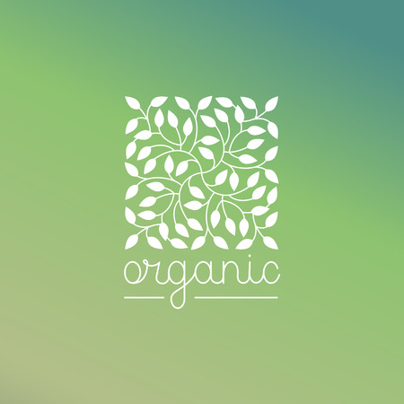 Vector organic and natural emblem and logo design template - green ecology concept or natural cosmetics - square made with leaves