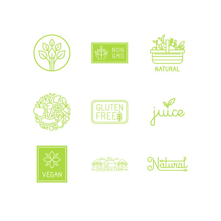 hand basket: set of green and organic products labels and badges - collection of different icons and illustrations related to fresh and healthy food
