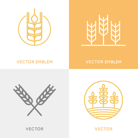 grain: set of design templates in trendy linear style - wheat and grain graphics for bakery emblems