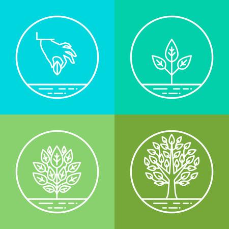 インフォ グラフィック デザイン要素と線形スタイル - ビジネスの発展と成長の概念 - のアイコンがツリーに種から植物の成長