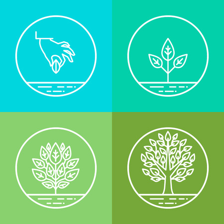 plants growing: infographics design elements and icons in linear style - business development and growth concepts - growing plant from seed to tree