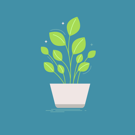 pot leaf: Vector illustration in trendy flat and linear style - green plant in the pot - infographics design element or icon for greeting card