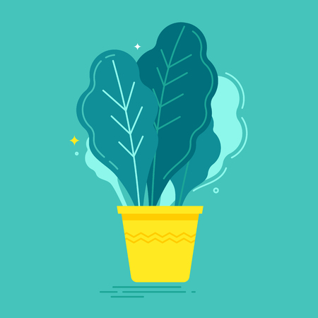 flowerpots: Vector illustration in trendy flat and linear style - green plant in the pot - infographics design element or icon for greeting card