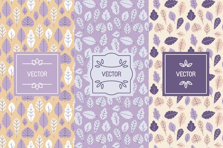 Vectorreeks ontwerpelementen voor verpakking en naadloze patronen met bladeren - achtergronden en sjablonen voor organische en natuurlijke schoonheidsmiddelen en met de hand gemaakte producten