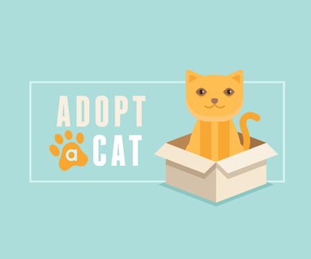 pet store advertising: Vector illustration in  flat style - adopt a cat banner design - smiling cartoon kitten in a box