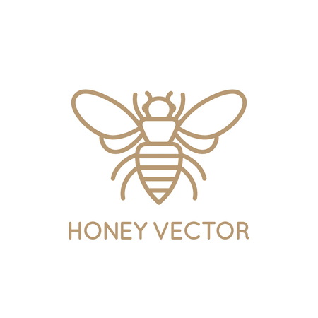 Vector logo design template in trendy minimal linear style - honey bee concept - emblem for food packaging Çizim