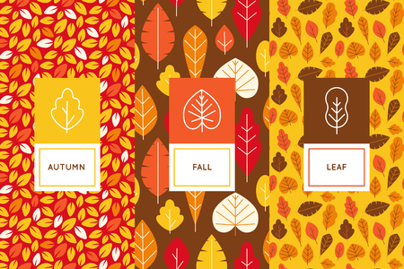 minimalistic: Vector set of design templates and elements for packaging in trendy flat linear style - seamless patterns with autumn leaves - abstract seasonal background.