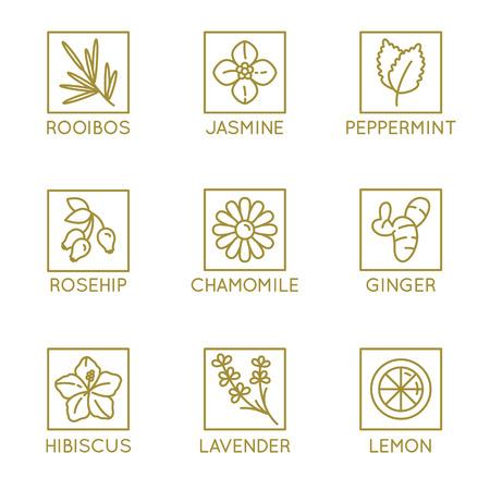 リニアスタイルのハーブオーガニックティーバッジとアイコンのベクターセット - 健康的な飲み物カフェイン無料包装デザイン要素