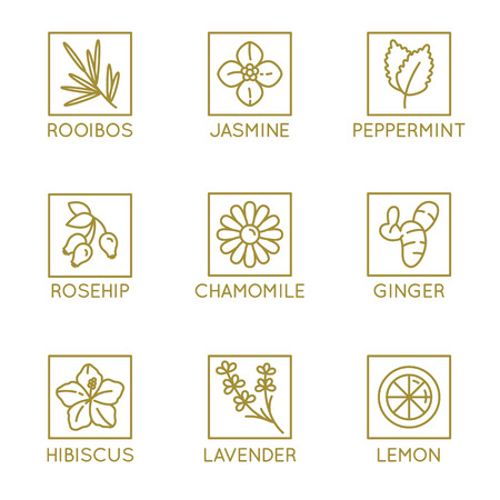 Vector set of herbal organic tea badges and icons in linear style - healthy drinks caffeine free packaging design elements Banco de Imagens - 98150945