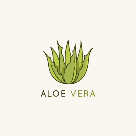 Vector logo design template and icon in linear style with aloe vera plant - emblem and badge for natural cosmetics packaging and beauty product